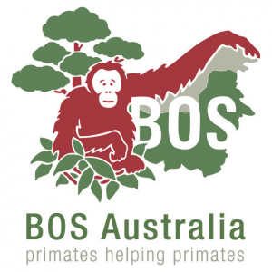 Search Results Web Result with Site Links Borneo Orangutan Survival Australia